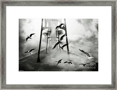Gull Bridge Framed Print