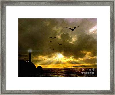 Gull Flight Framed Print