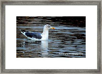 Gull On Winter's Pond  Framed Print