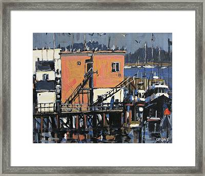 Gulls Aloft Framed Print by Brian Simons
