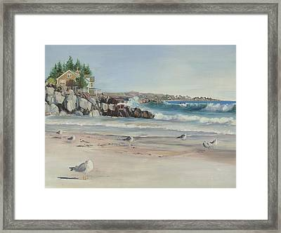 Gulls At Rest Framed Print