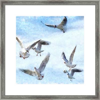 Gulls In Flight Watercolor Framed Print