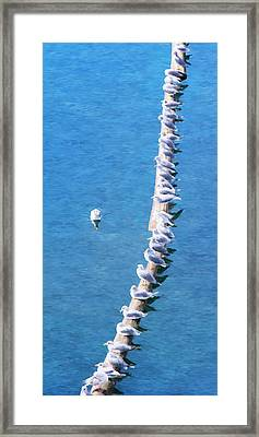 Gulls On A Log - Impressionist Waterscape Framed Print by Rayanda Arts