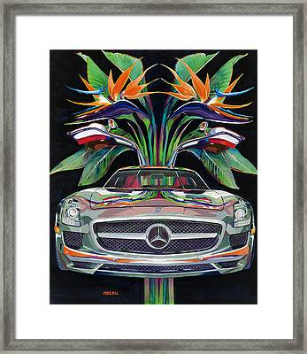 Gullwing Birds Of Paradise Framed Print by Mike Hill