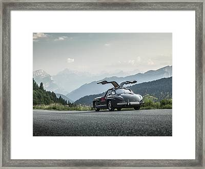 Gullwing In The Mountains Framed Print