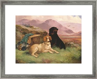 Gun Dogs Framed Print by Robert Cleminson