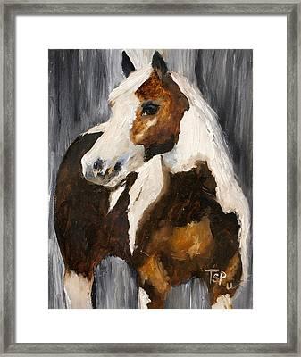Gunnar Framed Print