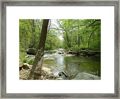 Gunpowder Falls - Ncr Trail Framed Print