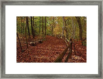 Gunpowder Falls Park Framed Print