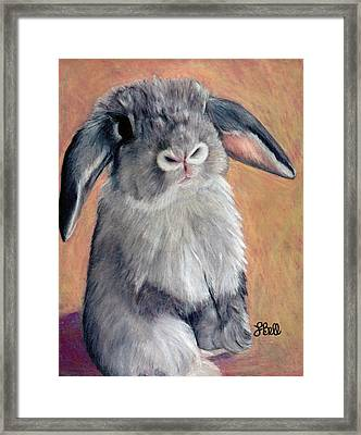Gus Framed Print by Laura Bell