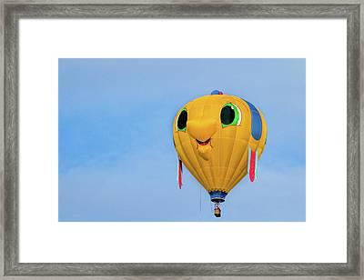Gus T Guppy Framed Print by Bob Orsillo