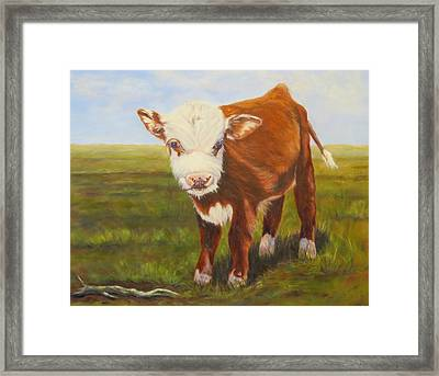 Gus, Cow Framed Print