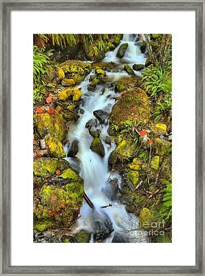 Gushing Through The Rocks Framed Print by Adam Jewell