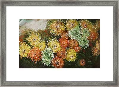 Gusty Chrysanthemums Framed Print