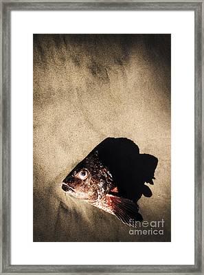 Gutted Framed Print
