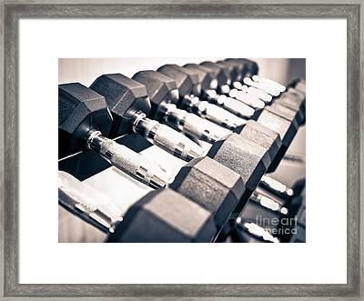 Gym Dumbbell Free Weights Rack Framed Print by Paul Velgos