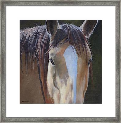 Gypsy Eyes Framed Print