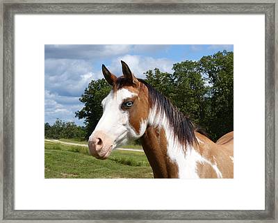 Framed Print featuring the digital art Gypsy Paint by Jana Russon