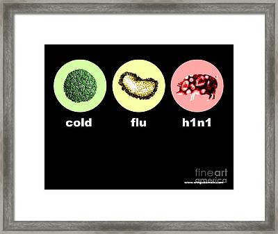 H1n1 Swine Flu Framed Print