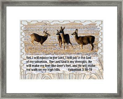Habakkuk 3 Framed Print by Cat Culpepper