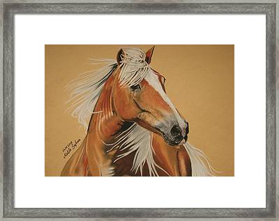 Framed Print featuring the pastel Haflinger  by Melita Safran