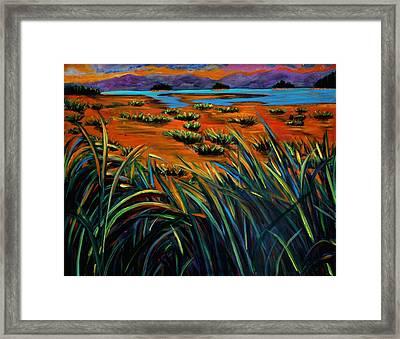 Haida Gwaii Sunrise Framed Print by Faye Dietrich