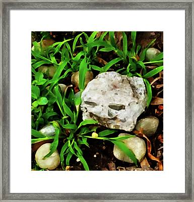 Haight Ashbury Smiling Rock Framed Print