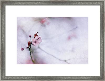 Haiku Two Framed Print by Rebecca Cozart