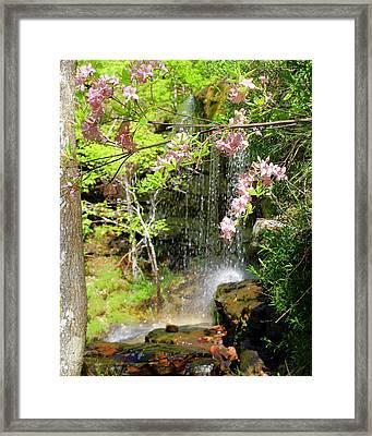 Haily Falls Framed Print by Marty Koch