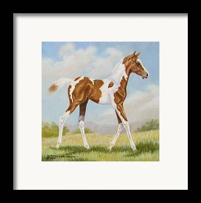 Animal Aritist Framed Prints