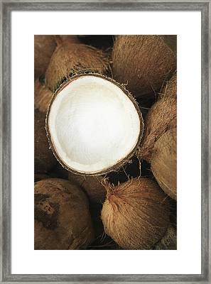 Half Coconut Framed Print