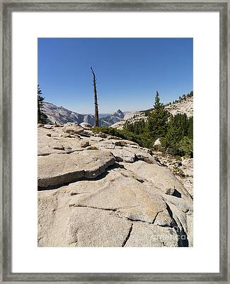 Half Dome And Yosemite Valley From Olmsted Point Tioga Pass Yosemite California Dsc04242 Framed Print