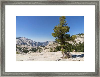 Half Dome And Yosemite Valley From Olmsted Point Tioga Pass Yosemite California Dsc04274 Framed Print