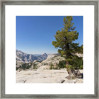 Half Dome And Yosemite Valley From Olmsted Point Tioga Pass Yosemite California Dsc04274sq Framed Print