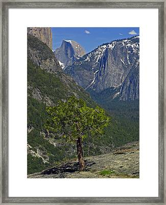 Half Dome Framed Print by Juergen Roth