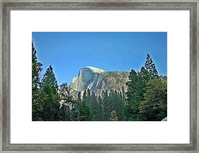 Half Dome Through The Trees 1 Ahwahnee Drive Yosemite National Park Ca Framed Print by Duncan Pearson