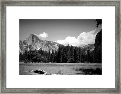 Half Dome Yosemite From The Meadow B And W Framed Print