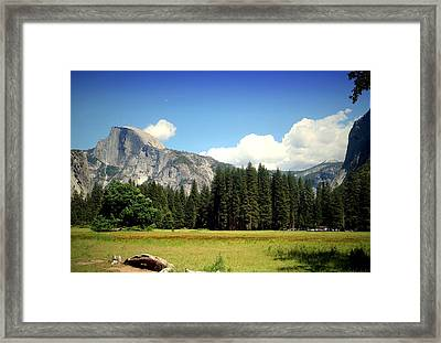 Half Dome Yosemite From The Meadow Framed Print