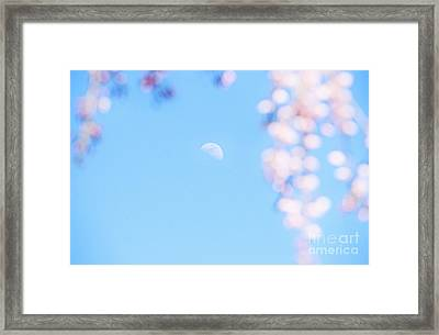 Half Moon And Weeping Cherry Blossoms Framed Print by Charline Xia