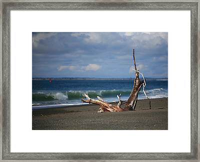 Halfmoon Bay Driftwood Framed Print by Mike Coverdale