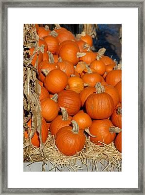 Halloween 69 Framed Print by Joyce StJames