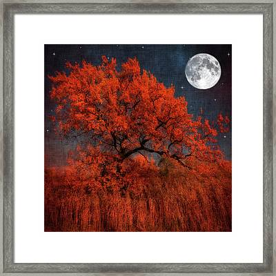 Halloween Color Framed Print by Philippe Sainte-Laudy Photography