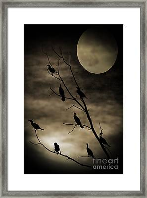 Guardians Of The Lake Framed Print
