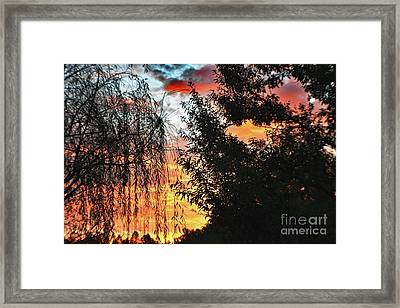 Halloween Sunrise 2015 Framed Print