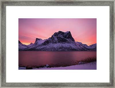 Halo In Pink Framed Print