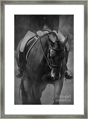 Halt Black And White Framed Print