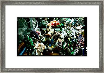 Hama Hama Trigger Checking Things Out Framed Print by Kirk Wieland