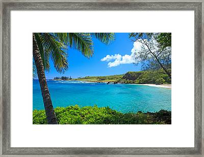 Hamao Beach With Palm Tree Framed Print