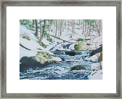 Hamburg Mountain Stream Framed Print by Constance Drescher