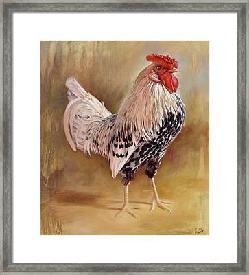 Hamburg Rooster Framed Print